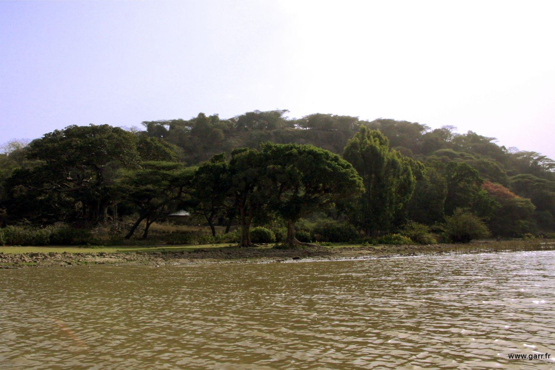 ethiopie-ziway-22-www-garr_-fr_