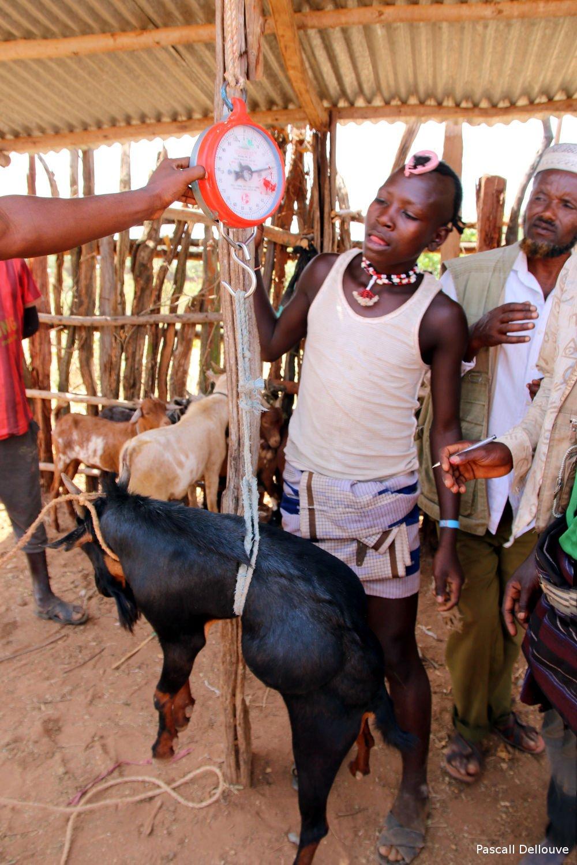 ethiopie-key_afer-15-pascal_dellouve